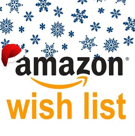 on 1 december we launched our transform amazon wish list please consider buying a gift for our clients this christmas - Amazon Christmas List